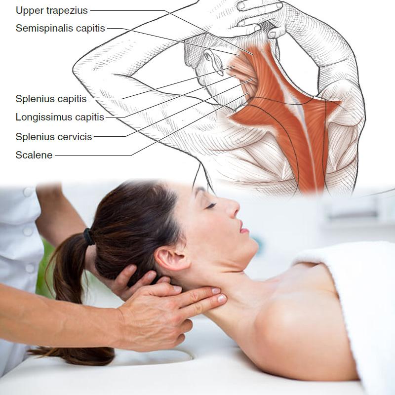 4D Neck focus massage